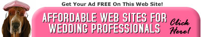 Affordable websites for wedding professionals.
